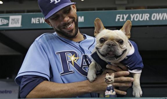 (Photo via @MLB)